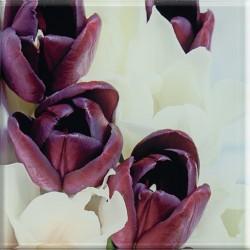 Uniwersalne Inserto Szklane Tulipany 20x20